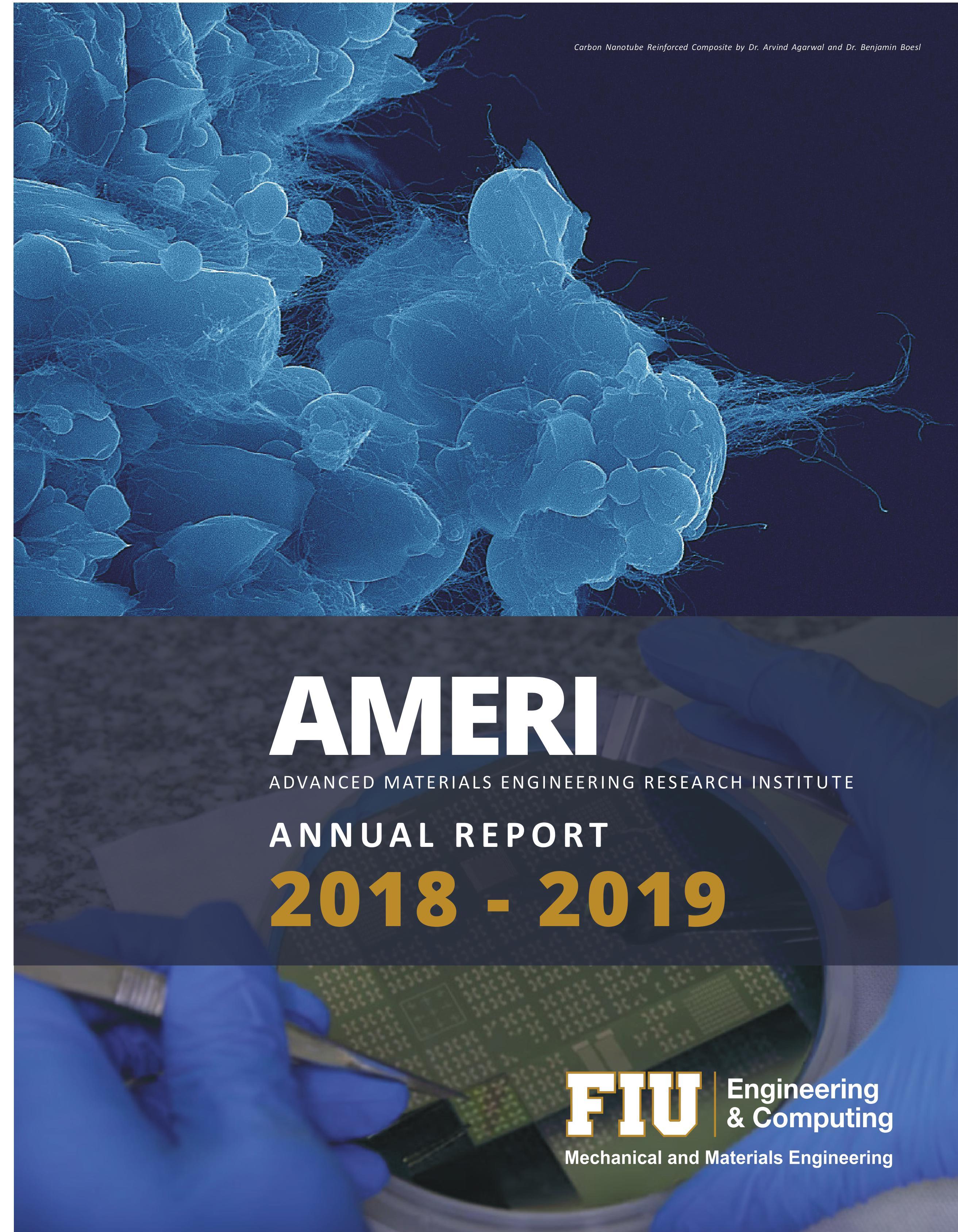 AMERI_19_ANNUAL_REPORT